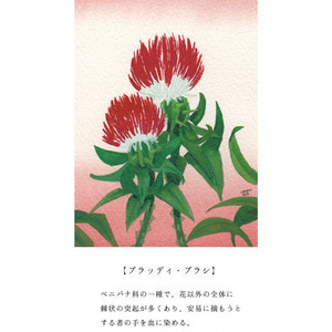 夢想庭園植物図録