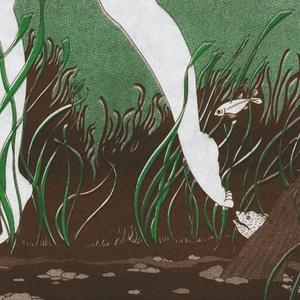 ブックカバー『水草』