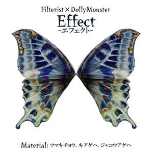 【限定つけ襟セット】Filterist×DollyMonster 「コラボつけ襟」と「Effect」写真集
