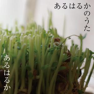 2nd アルバム 「あるはるかのうた」