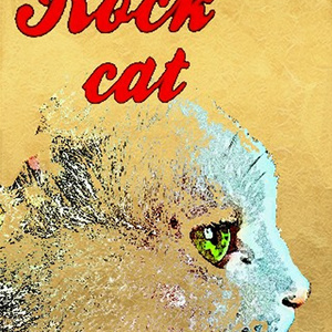 Rock cat eye