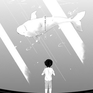 シロイルカは赤道直下を泳ぐことができるか