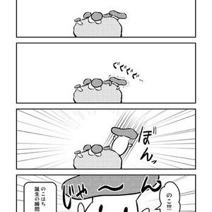のこ★たん