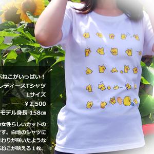 ぷねこがいっぱい!レディースTシャツ