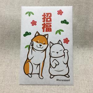 招き柴猫の招福ポチ袋