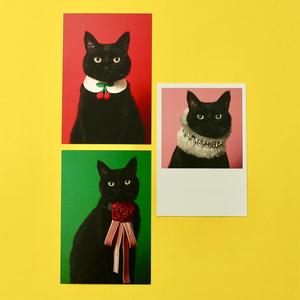 ポストカード3種類セット