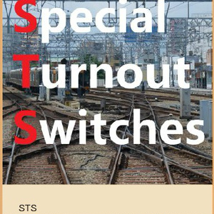 Special Turnout Switches