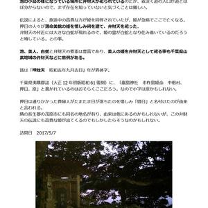 千葉県弁財天調査本Vol.2夷隅地域