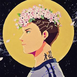 夜桜ポストカード