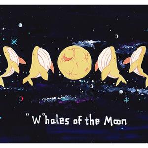 クジラの満ち欠けポストカード