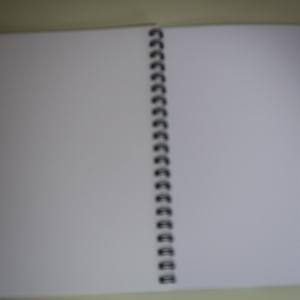 令和怪奇画帳(B6ノート)リング式