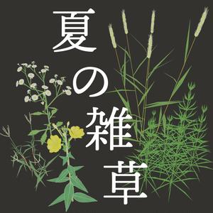 【3Dモデル】夏の雑草つめあわせ