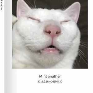 【予約販売】ミント写真 おぶすver③