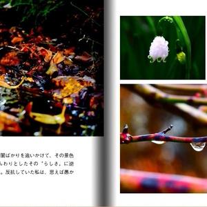 写真集「あの初夏を掴まえる。」140字散文