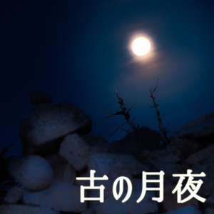 古の月夜 - 一点物