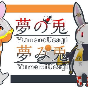 【Quest/PC対応】夢の兎 / 夢み兎