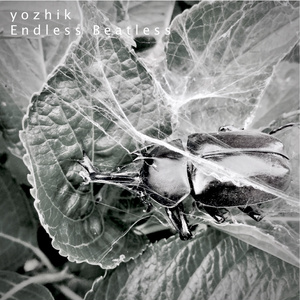 Yozhik(磁気P)「Endless Beatless」