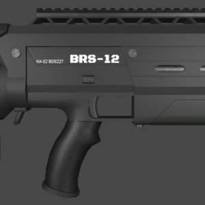 BRS-12