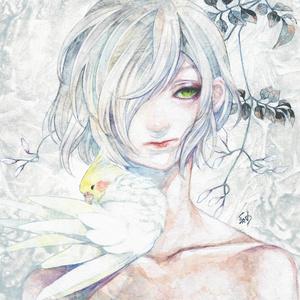 原画「芳しの羽衣」