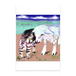 猫とヤギのポストカード