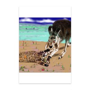 猫とカンガルーのポストカード
