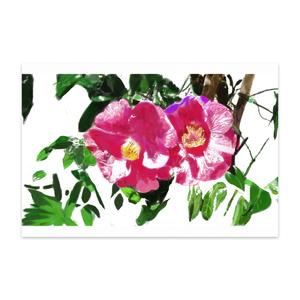 椿のポストカード