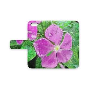 雨に濡れるニチニチソウの手帳型iPhoneケース - iPhone 5 / 5s / SE