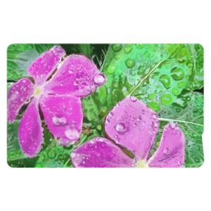 雨に濡れるニチニチソウのICカードステッカー