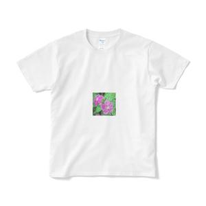 ニチニチソウのTシャツ(短納期) -  ホワイト
