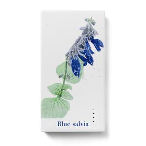 青いサルビアのモバイルバッテリー