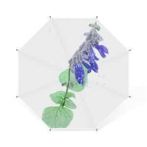 青いサルビアの卓上ミニ傘