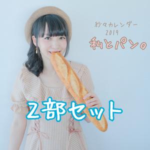 【紗々発送】紗々カレンダー2019【2部セット】