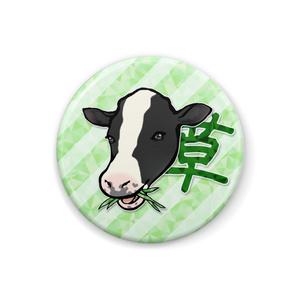 草を喰む牛