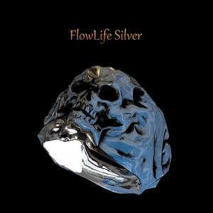 3Dモデル - FlowLife Silver -