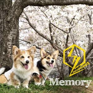 2nd Single「Memory」