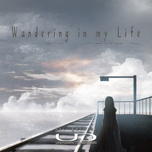 Wandering in my life