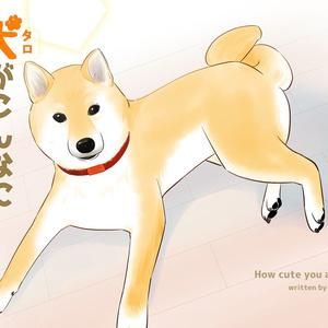 犬(タロ)がこんなにかわいいとは