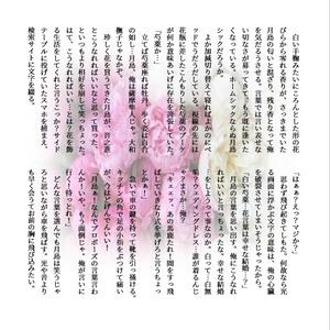 月鯉コンビパック[安心boothパック]