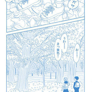 Walking in the park【秋】