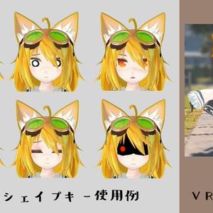 VRアバター向け3Dモデル【ラドドール】