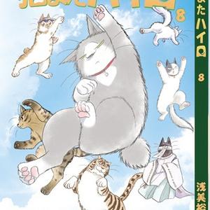 猫またハイロ8巻