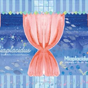 【奏薫】Miaplacidus
