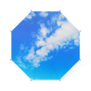 BLUE SKY(ブルースカイ) 卓上ミニ傘