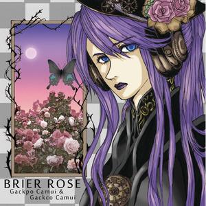 BRIER ROSE