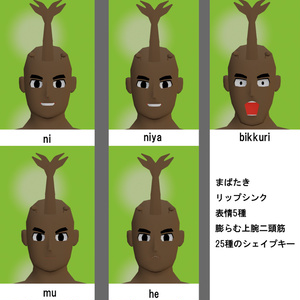 【3Dモデル】マッスルカブト