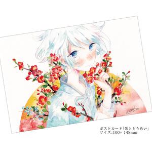 ポストカード(〜2016)