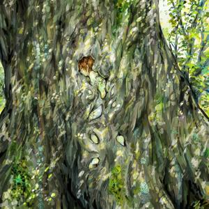 ポストカード5 『木に呑み込まれる少年』