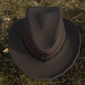 MCF Wild West Hat
