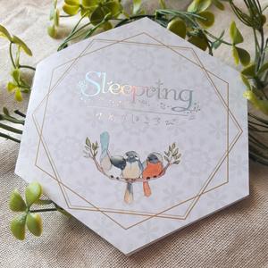イラスト集【Sleepring ~ゆめのほころび~】