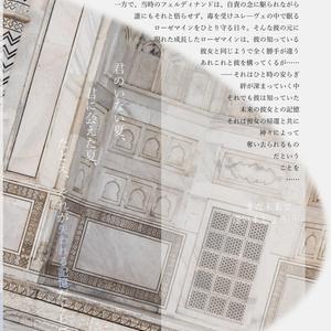 単品 総集編「Verstecktes Zimmer」~隠し部屋~